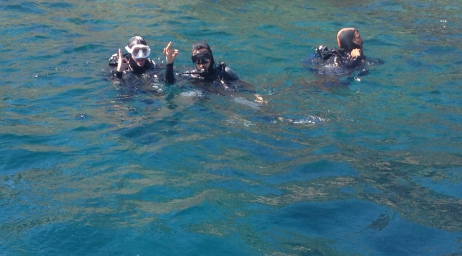 Plongée sous marine à la Ciotat
